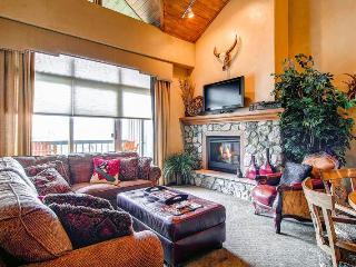Borders Lodge - Lower 309 - Beaver Creek vacation rentals