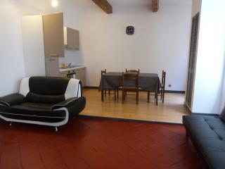 T3 au centre ville de carcassonne - Carcassonne vacation rentals