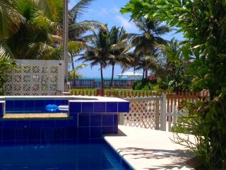 Casita Carinosa - Seaview Villa with Pool - Caye Caulker vacation rentals