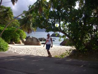 apartments by the beach - Anse Volbert vacation rentals