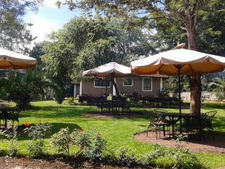 Maasai Café - Arusha vacation rentals