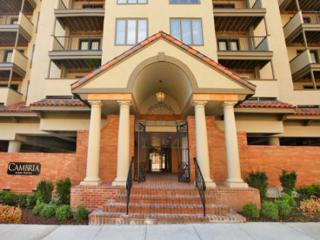 CAMBRIA202(CAMBRIA202) - Kansas City vacation rentals
