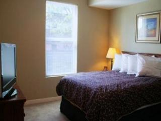 45MAD413N(45MAD-1BR) - Kansas City vacation rentals