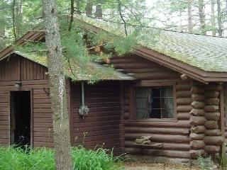 Log Home On Wequas Lake - Gaylord vacation rentals
