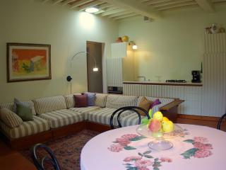 Beautiful 18th Century Vacation Villa in Tuscany - Pistoia vacation rentals