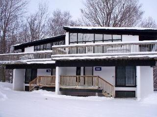 6 Bedroom Chalet / Outdoor Hot Tub 34AR #141 - Collingwood vacation rentals