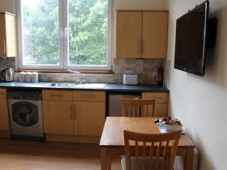 Aberdeen Granton Place - Aberdeen vacation rentals