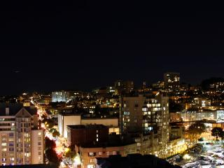 Luxury Penthouse next to Japantown - San Francisco vacation rentals