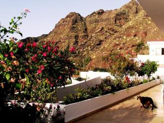 House in Bajamar (North of Tenerife) with garden - La Laguna vacation rentals