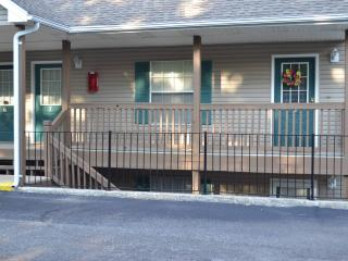 Gabby's Abby provides comforts of home - Ridgedale vacation rentals