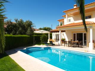 Beautiful Villa in Sunny Portugal - Caldas da Rainha vacation rentals