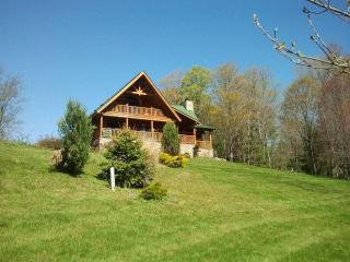 Damascus Luxury Log Cabin - Forest City vacation rentals