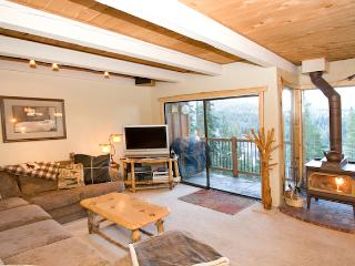 Timber Ridge 45 - Ski in Ski out Mammoth Condo - Mammoth Lakes vacation rentals