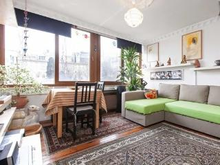 The Dogs -Roof top terrace flat with view - Istanbul vacation rentals
