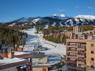 Gorgeous Ski In/Ski Out; Hot Tubs; Walk to Town - Breckenridge vacation rentals