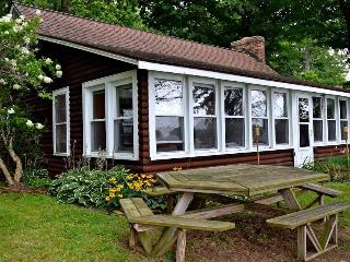 Rustic Diamond Lake Island Waterfront Cottage - Cassopolis vacation rentals