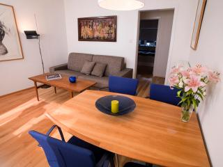 Cozy Central Apartment - Reykjavik vacation rentals