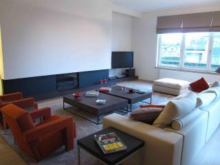 Foret de Soignes - 3 Bedrooms - Brussels vacation rentals