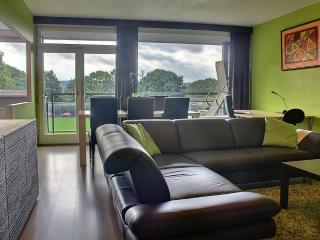 Room Nest 2 - Apartment - Liege vacation rentals