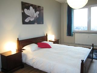 Pont de Fragnee - Apartment - Liege vacation rentals