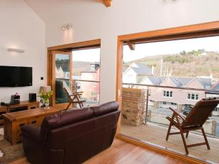 Quay Lodge - Paignton vacation rentals
