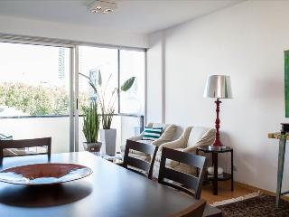 PALERMO 2 Suites Ap. POOL&Fast WIFI - Buenos Aires vacation rentals