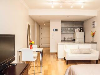 Awesome Studio Recoleta Wifi! 6MB - Buenos Aires vacation rentals