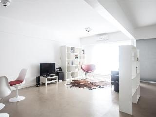 Fantastic Palermo SOHO! FAST WIFI 12 MB! - Buenos Aires vacation rentals