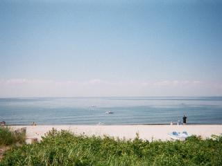 1BR Luxury Beach  Cottage Wineries Hampton North fork All Year 5 min Wineries Hamptons - Long Island vacation rentals