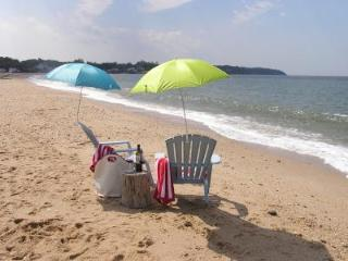3BR North Fork Beach bungalow 1/2 mil to vineyards wine tasting Kayak - Center Moriches vacation rentals