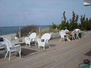 Beach House All Year, Wine tasting North Fork near Hampton Sleeps 12 The Diana - Long Island vacation rentals