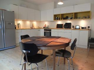 Two level Copenhagen apartment at Noerreport station - Copenhagen vacation rentals