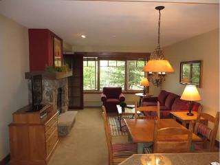 #1 Rated Property. Ski In! Walk2Town! - Breckenridge vacation rentals