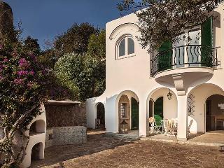 Villa L'Olivo di Ischia - Ischia vacation rentals