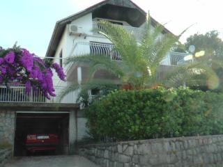 Beautiful home in Montenegro - Radovici vacation rentals