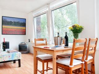 Rembrandt Studio 2 Next to Rijksmuseum - Amsterdam vacation rentals