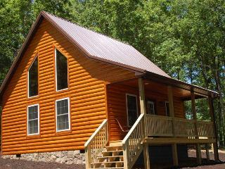 The White Pine Loft:  New Construction, Perfect for Couples! - Luray vacation rentals