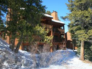 Tyra Summit- Four O'Clock - 1 bed condo Ski in/out - Breckenridge vacation rentals