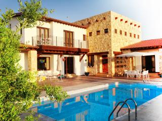 Brand new traditional Villa with modern flair and swimming pool - Nikoklia vacation rentals