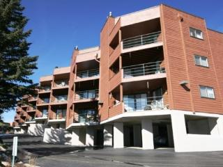 Marina Place 336 - Dillon vacation rentals