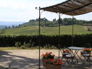 Panoramic Apt 9 in Chianti