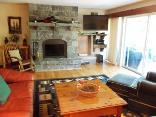 ATTACHED LODGES - RACCOON 4 - Lake Placid vacation rentals