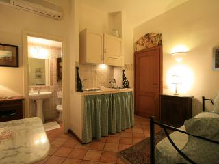 ELEGANT 100 MT FROM VATICAN - DAILY CLEANING! - Rome vacation rentals