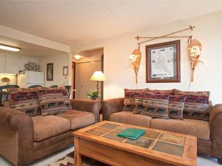 Trails End 508 - Breckenridge vacation rentals