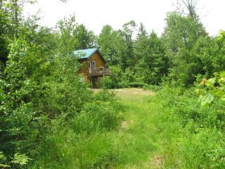 Secluded Log Cabin at Affordable Rate - Brownfield vacation rentals
