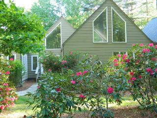 Tree House. Walk to Resort Amenities. Spacious. - Sapphire vacation rentals