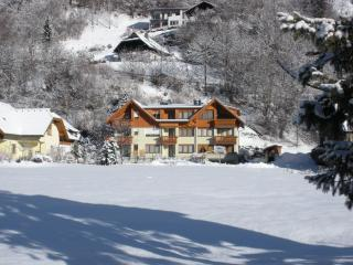 appartamento - Bad Kleinkirchheim vacation rentals