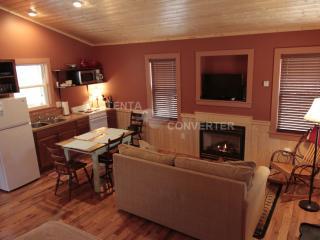 Papa John's Cabin: Waterfront Cabin in the Woods - Elkin vacation rentals