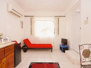 BoHo Flats of Barbican Apt#4 - Kingston vacation rentals