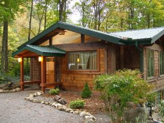Beautiful Cabin. Sound Of The Rushing Creek. Hiking & Fishing From The Front Door. Gas Logs. - Burnsville vacation rentals